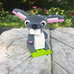 Lego Woodland Creatures!<br>(North Yarmouth Academy)